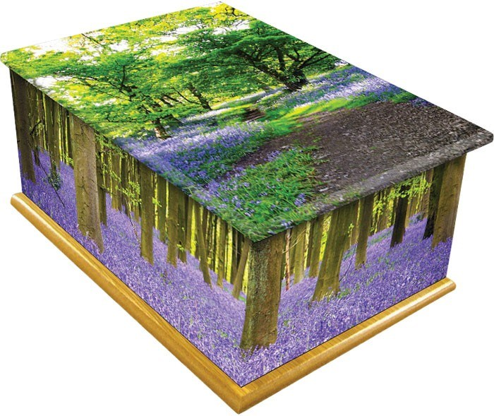 Contemporary Casket - Bluebell Wood