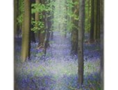 Bluebell Wood Scatter Tube